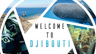 Discover Djibouti - An amazing adventure underwater and on land !