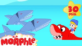 Shark Attack - HELP MORPHLE! | Robot Sea Adventure | Cartoons for Kids | Morphle TV