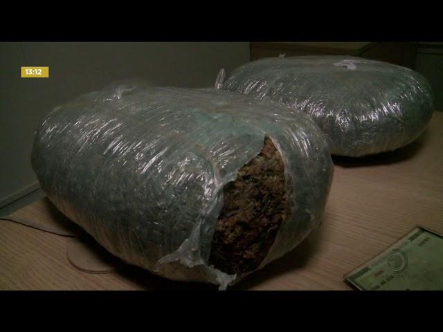 Homem  foi preso com uma grande quantidade de maconha dentro de casa