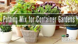 Container Gardening Essentials | Scotts Miracle-Gro Canada