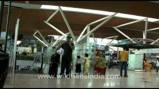 Indira Gandhi International Airport T3