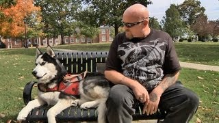 Service Dogs Heal Troops (umtv)