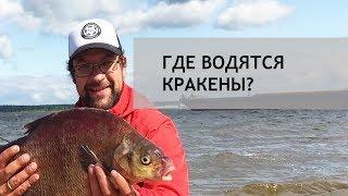 Где водятся Кракены Лещ на Рыбинском водохранилище