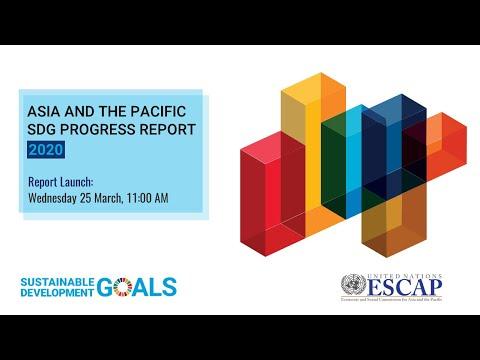 Launch of the SDG Progress Report 2020