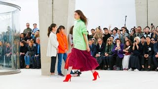 Celine | Spring Summer 2017 Full Fashion Show | Exclusive