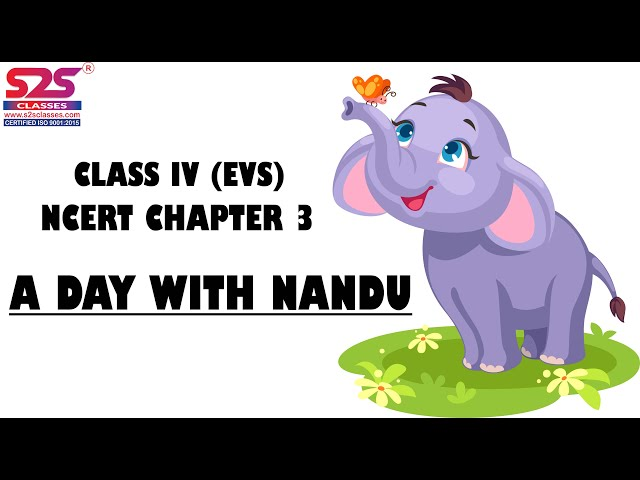 Class 4 EVS Chapter 3 A Day With Nandu 1