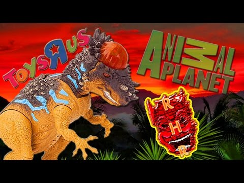 Animal Planet - (Dino Valley) Stygimoloch Review / Look