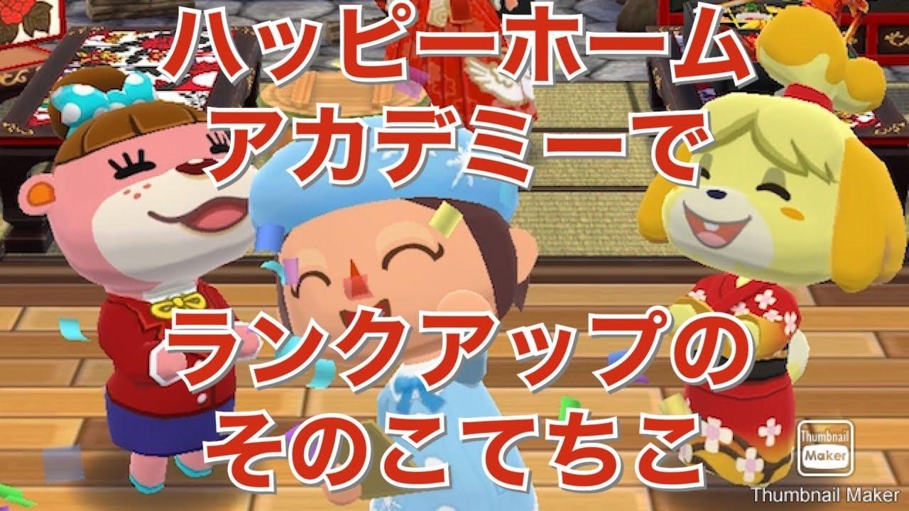 【ポケ森】ハッピーホームアカデミーでランクアップのそのこてちこ♪ そのあとOKモータースのゲームで傷心 Animal Crossing Pocket Camp