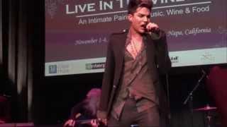 Скачать Adam Lambert Quiet Desperation 2006 GIFS