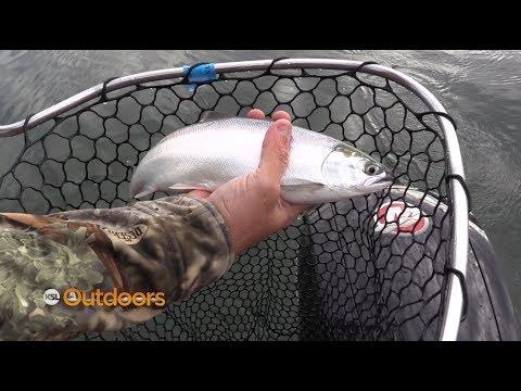 2019 Kokanee Fishing Tips at Strawberry Reservoir Mp3
