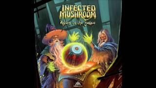 Infected Mushroom - Flamingo
