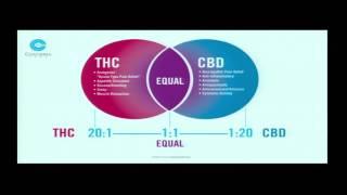 Medical Marijuana 101 wİth an Emphasis on HIV