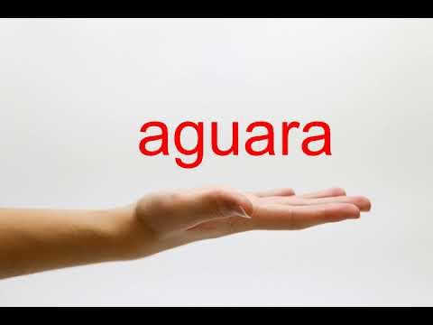 How to Pronounce aguara - American English