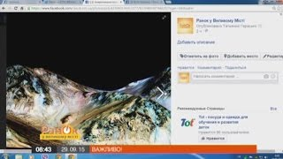 NASA: На Марсе течет соленая вода