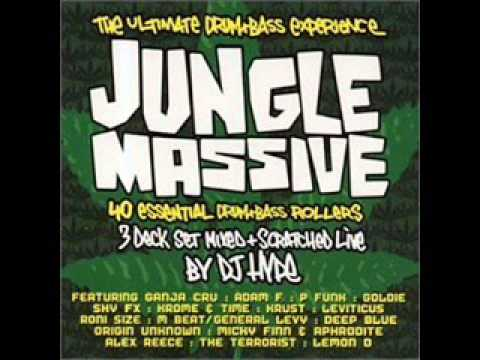 33 DJ Krust   Set Speed JUNGLE MASSIVE BY DJ HYPE