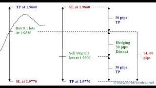 Cara Teknik Hedging Yang benar Dalam Forex