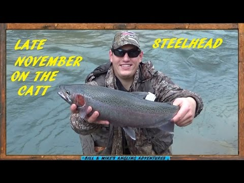 STEELHEAD Fishing - Late November On  Steelhead Alley