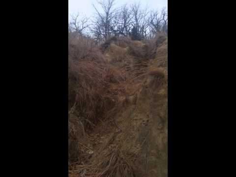 Hummel Park (Devil's Point)