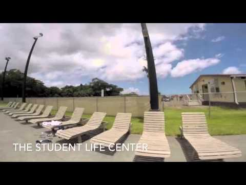 University of Hawaii at Hilo - International Students