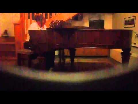 Chateau Lobby #4 in C For Two Virgins; Father John Misty piano cover