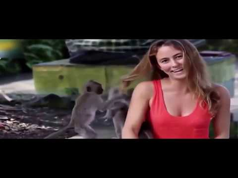 Monkeys Attack The Beautiful Girls Funny Compilation  Funny Vines Fails Compilation