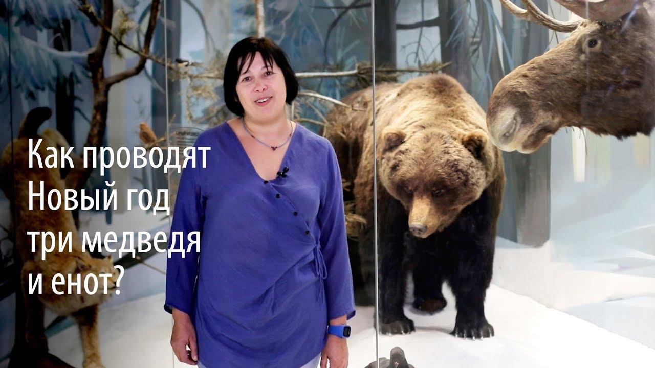 Как проводят Новый год три медведя и енот?