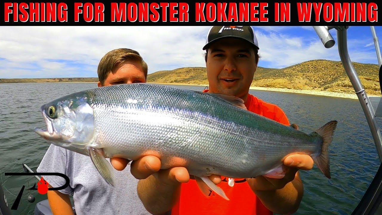 Fishing for Monster Kokanee at Flaming Gorge