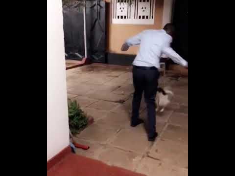 NANDY APOST VIDEO YA RUGE ALIVYOKUA AKICHEZA NA MBWA