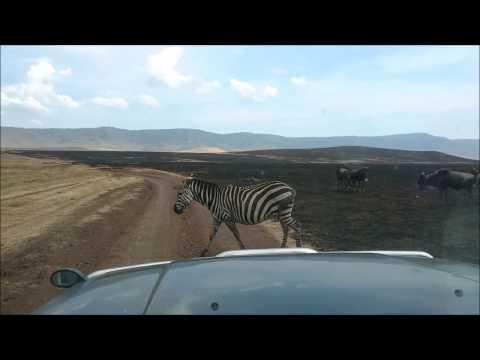 Tanzania Trip 2016