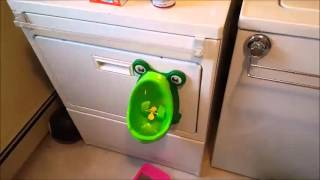 Milliard BogFrog Urinal Potty Trainer for Boys Review,  Cute as a bug in a rug   Or bug in a frog