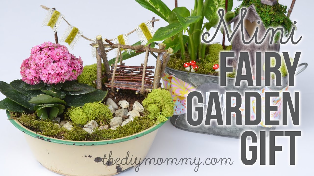 Superb How To Make A DIY Miniature Fairy Garden Gift   YouTube
