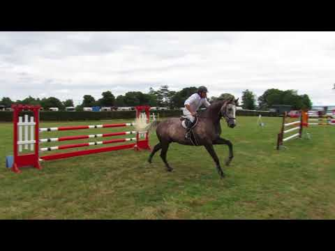 Sardonyx 1.10m (David Moran) 22/07/2018