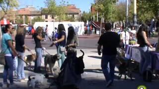 Noticias TM9 21 Noviembre 2014 Medina del Campo