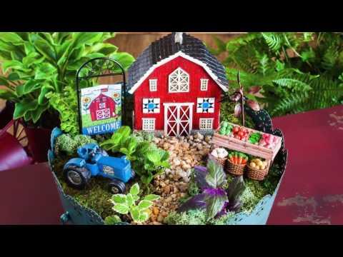 How to Build a Mini Garden