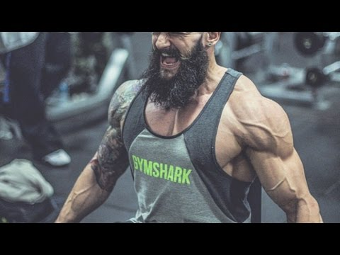What is GymShark