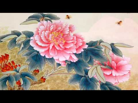 """ A Special Lotus Flower "" to Music by Kitaro"