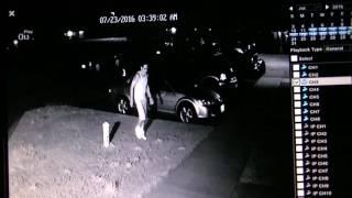 Security Cam footage of drunken fight Giiwedin.  Bad angle. Narration.