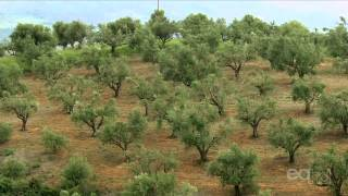 Greece  (Documentary) I Have Seen the Earth Change
