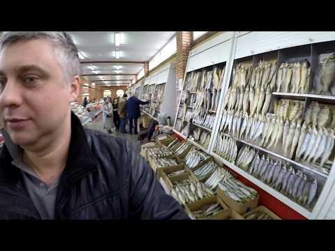 рыбалка во  иссадах