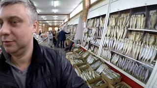 В Астрахань за рыбой.  Подводная охота. Часть IV.  Селенские Исады