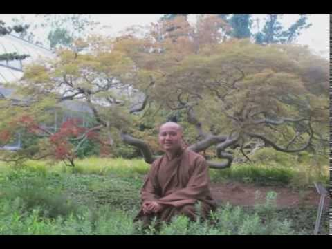 Transform the World of Impurities - Thay. Thich Phap Hoa (Dec.12, 2005)