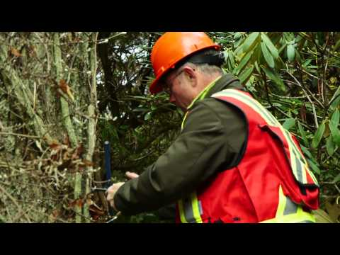 video production companies vancouver - Tetra Films (HortEducationBC field arborist profile video)
