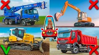 Строительный Транспорт и Техника для Детей. Развивающее Видео. Логика для Малышей