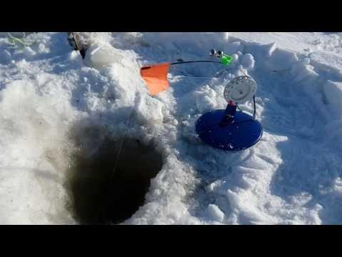 насадка для ловли сига зимой