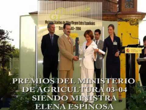 ACEITE DE OLIVA VIRGEN EXTRA MANUEL MONTES MARIN. ...