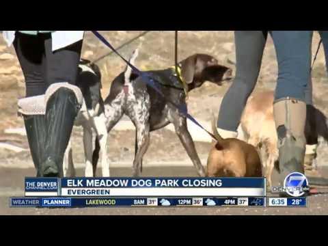 Popular dog park closing in Evergreen