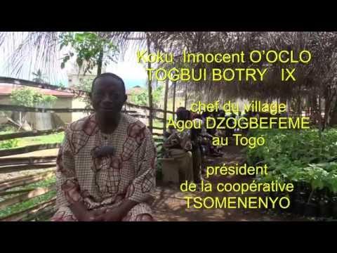 Interview d'Innocent, producteur de cacao au Togo