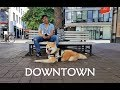Akita Inu - Downtown (秋田犬) の動画、YouTube動画。