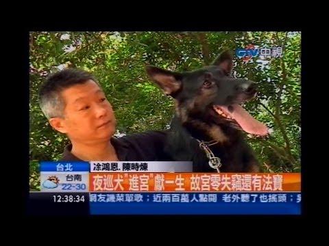 中視新聞》4隻夜巡犬 守護故宮國寶「大內高手」