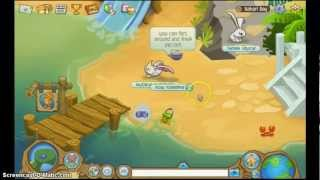 Animaljam how to be a non member fox!